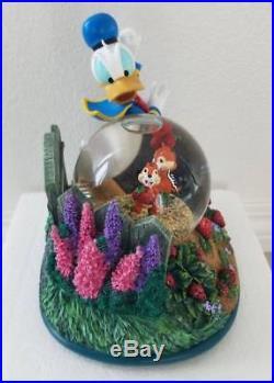 Disney Donald Duck Chip & Dale Musical Snowglobe Strawberry Garden Water Globe